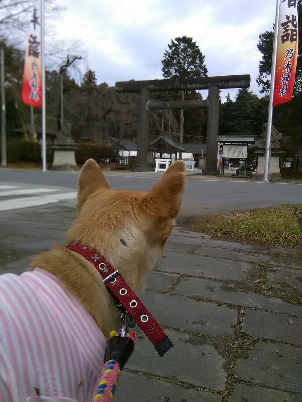 乃木神社ですか?